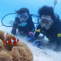 宮古島ビーチ体験ダイビング