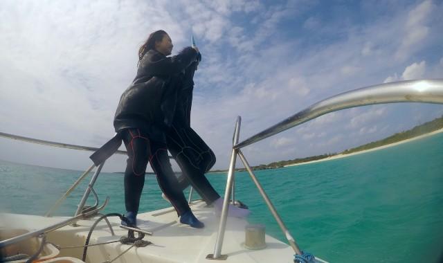貸切ボートダイビング