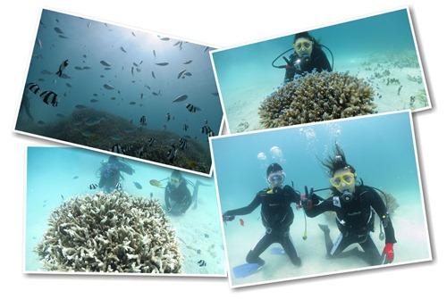 カップルでダイビングを楽しむ宮古島の海でのダイビング