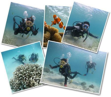 ご夫婦貸切ツアーで楽しむ宮古島のダイビング