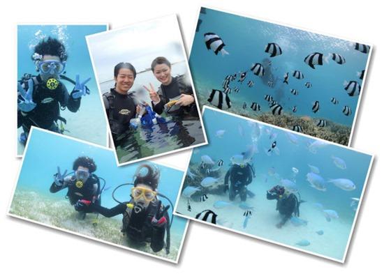 カップル必見の宮古島のダイビング風景