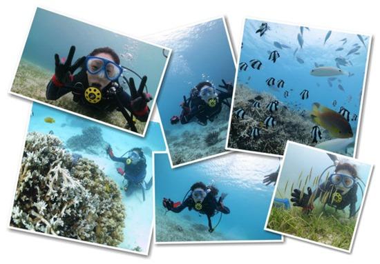 一人旅でも安心して参加できる宮古島のダイビング