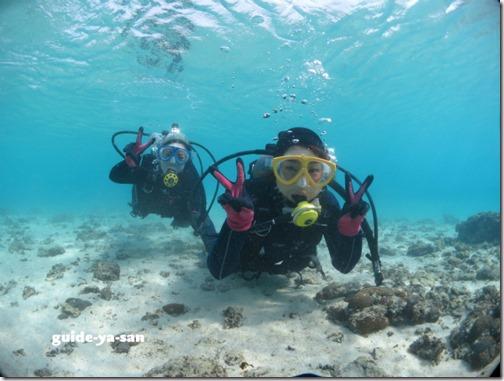 透明度が良い海でのダイビング