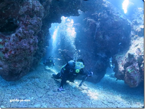 迷路のような海中地形を楽しむ体験ダイビング